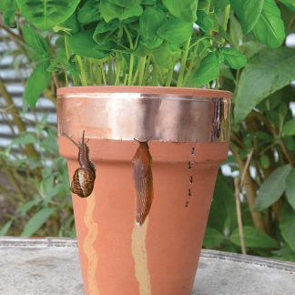 Plantbescherming